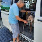 Im Einsatz für Tiere in Not - unser Bereitschaftsfahrer
